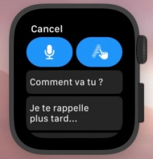 AppleWatchDictation